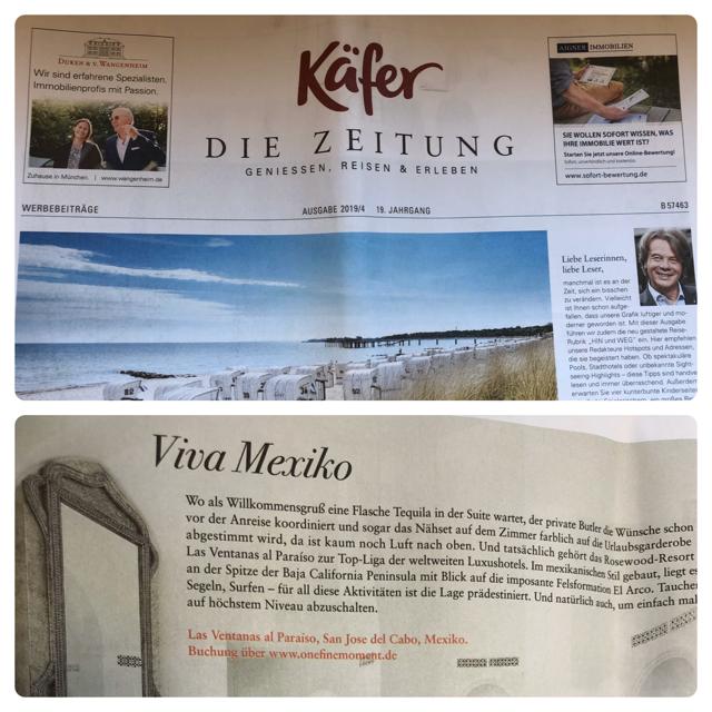 01 - käferzeitung.jpg.png