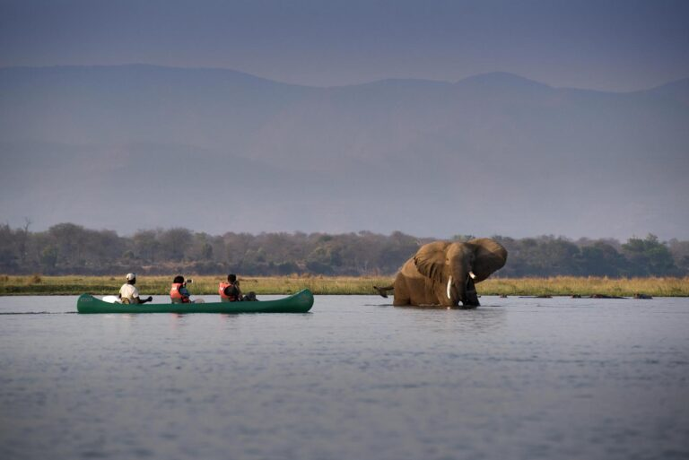BumiHills - zambezi_expeditions_mana_pools_national_park_zimbabwe_safari_tented_camp_african_bush_camps_canoe_151