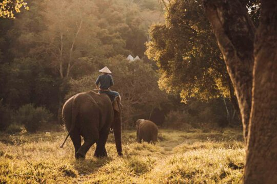 Four Seasons Tented Camp Chiang Rai - onefinemoment_Asien_Thailand_Four-Seasons-Tented-Camp-Chiang-Rai_3.jpg