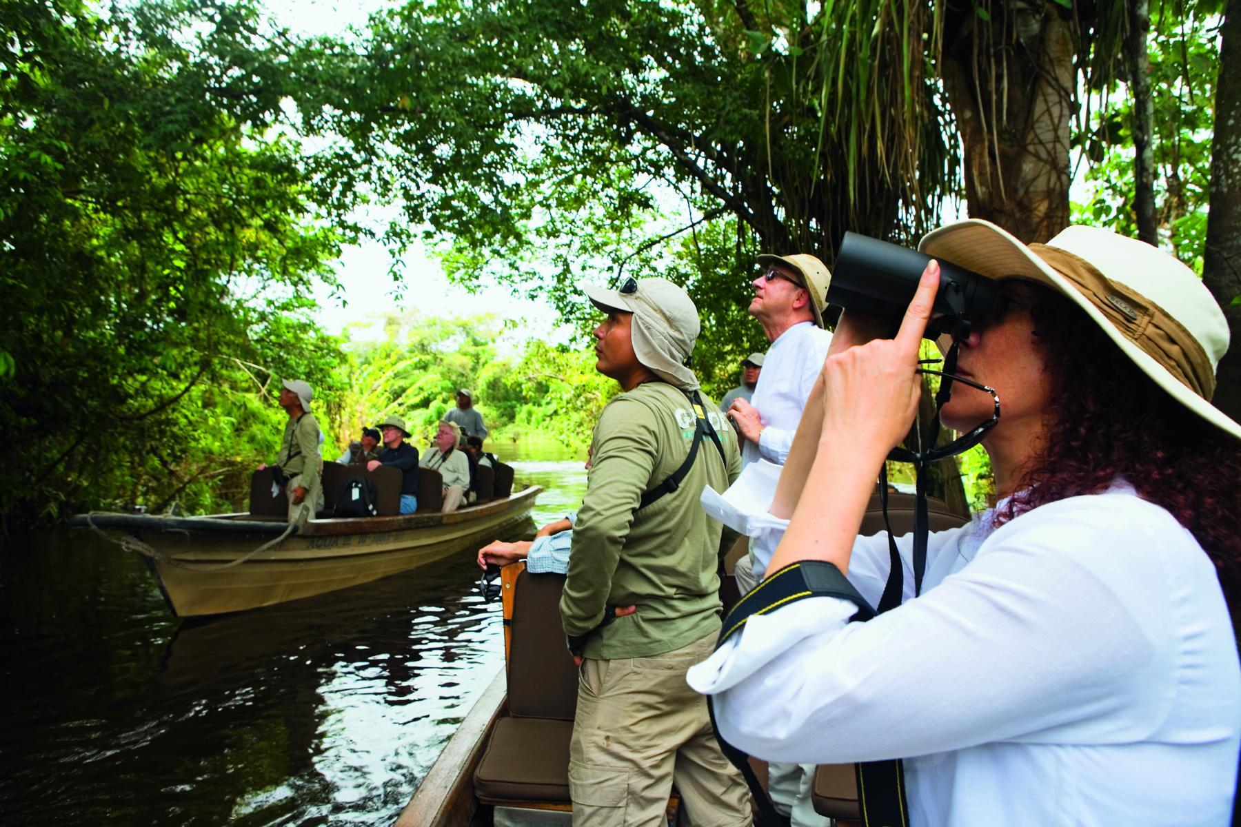 Birdwatching Ausflug bei einer Kreuzfahrt mit der Aria Amazon
