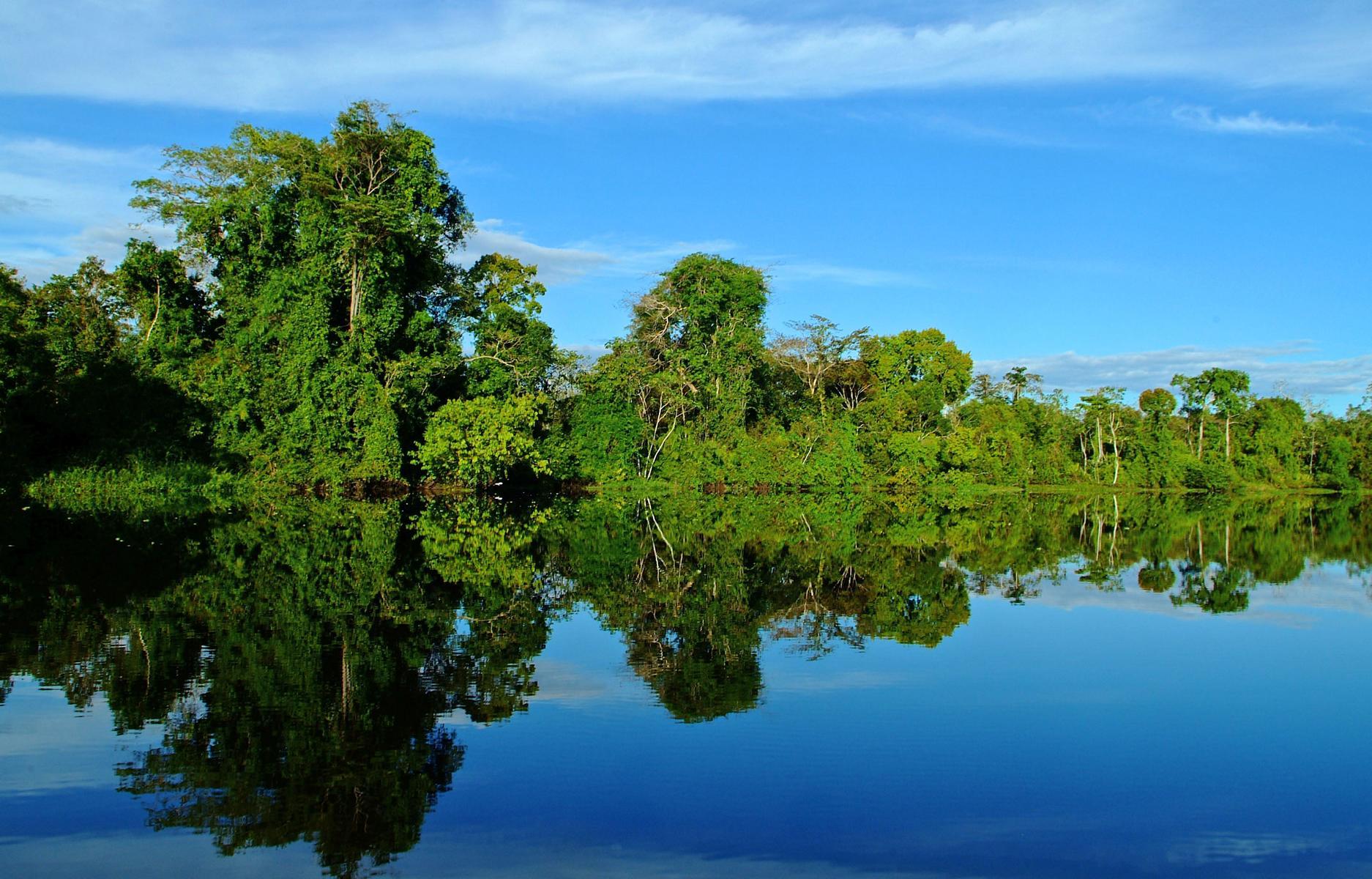 Der Amazonas bei einer Kreuzfahrt mit der Aqua Nera