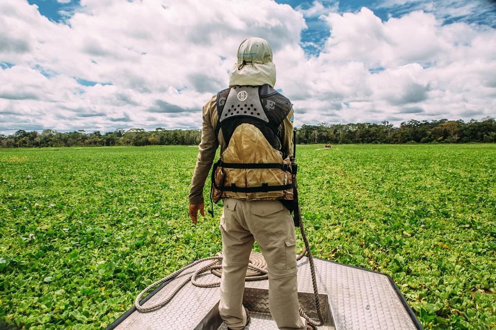 Exkursion in die Sumpfländer des Amazonas bei einer Kreuzfahrt mit der Aqua Amazon