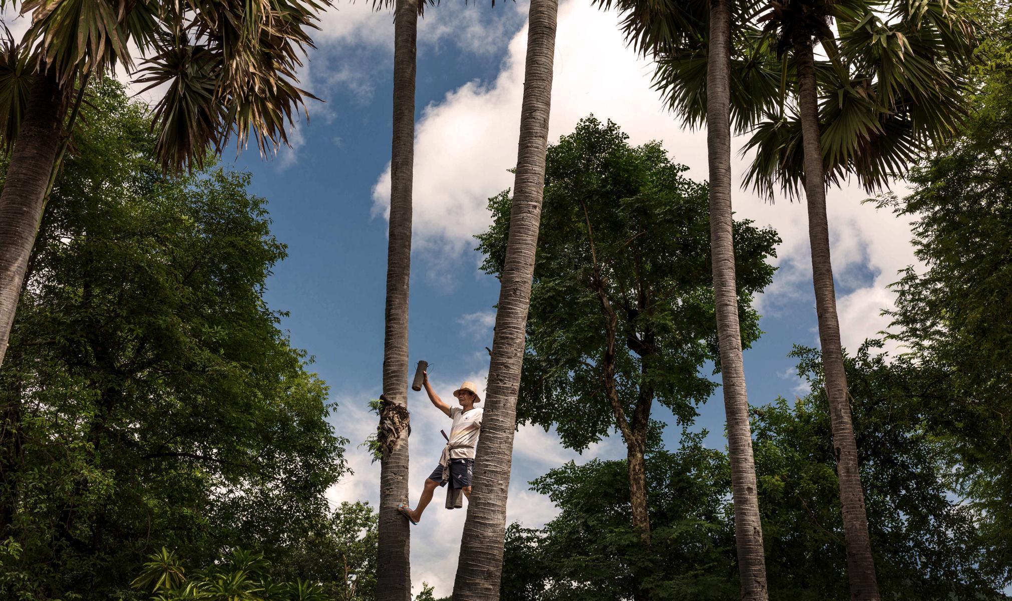 Tagesausflug aufs Land in Kambodscha