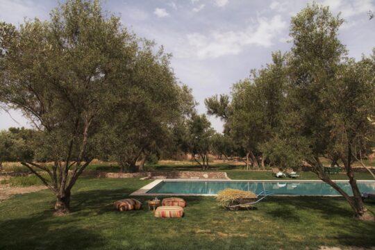 BerberLodge - K1600_Pool.jpg