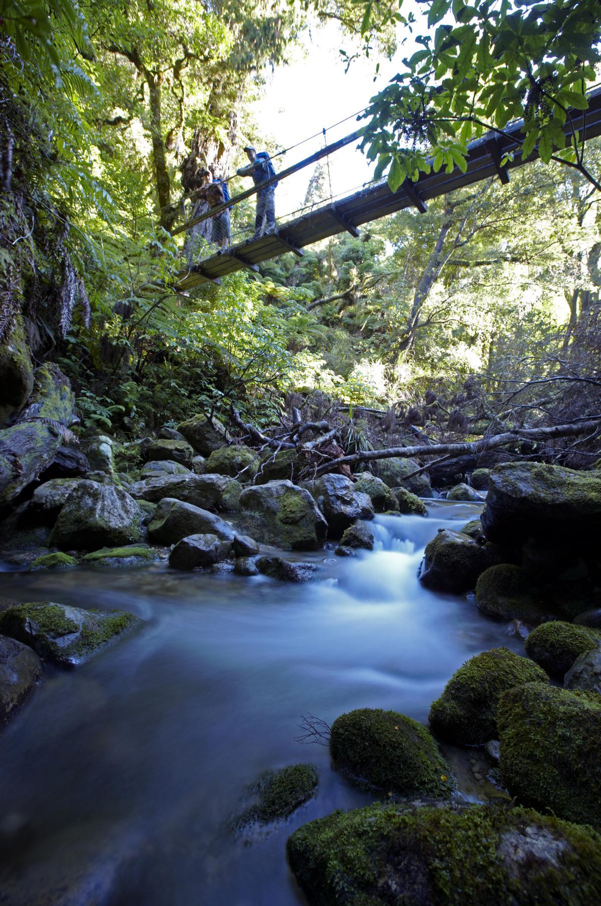 Auslug in die Natur mit einer Brücke über den Fluss bei der Marlborough Lodge in Neuseeland
