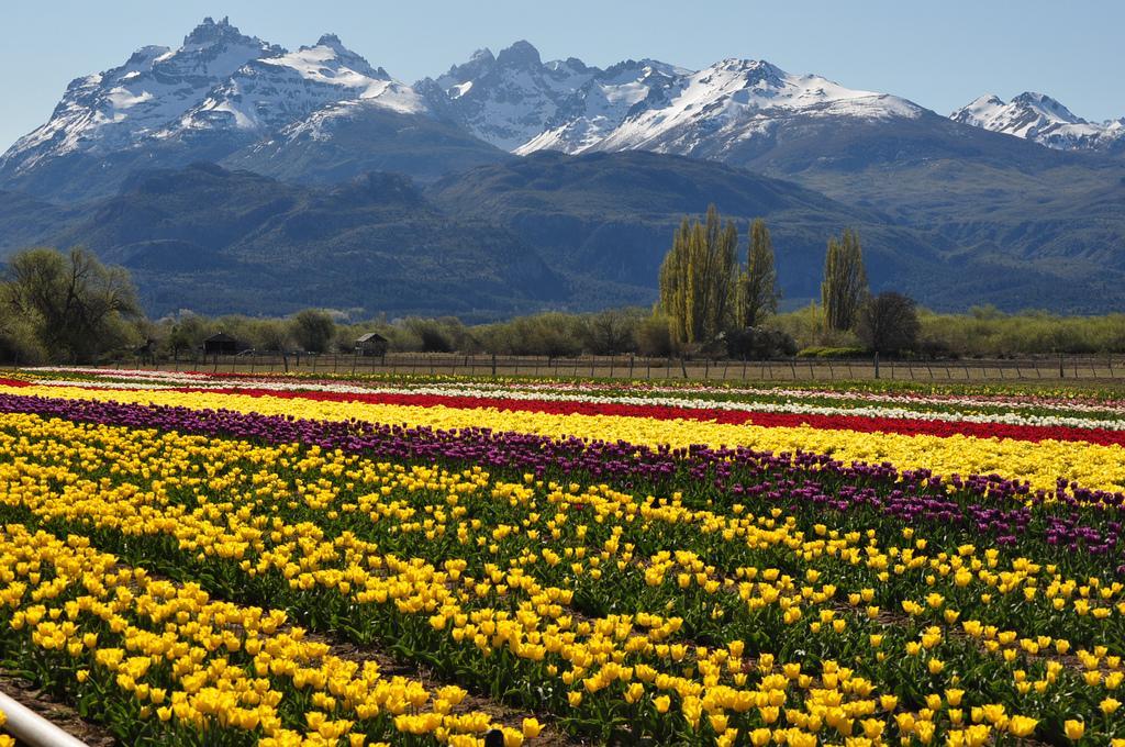 Rundreise - K1600_Bariloche-Argentina-By-Esencia-Travel-2.jpg