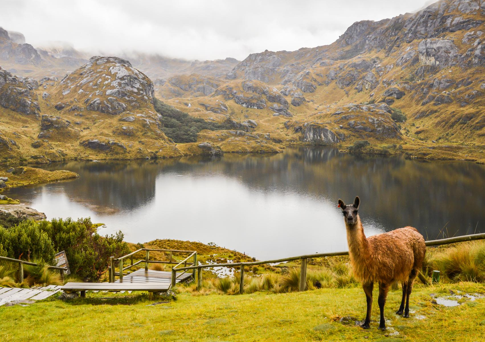 Rundreise - K1600_shutterstock-271305959-ecuador-cajas-national-park.jpg